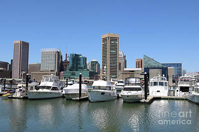 Photograph - Baltimore Boats by Carol Groenen