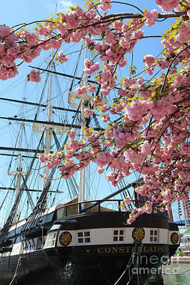 Photograph - Baltimore Uss Constellation With Cherry Blossoms by Carol Groenen