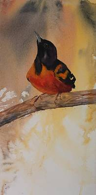 Painting - Baltimore Oriole by Ruth Kamenev