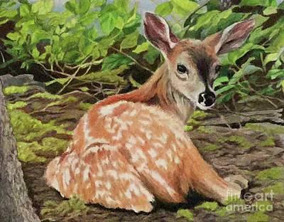 Bambi Art Print by Sandra McClelland