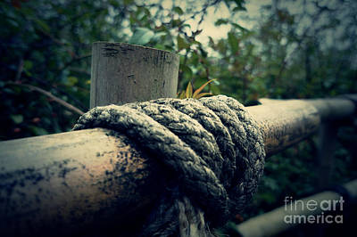 Bamboo And Knotted Rope Art Print by LozMac