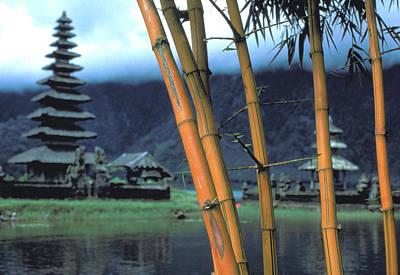 Photograph - Bamboo And Temple On Bali by Carl Purcell