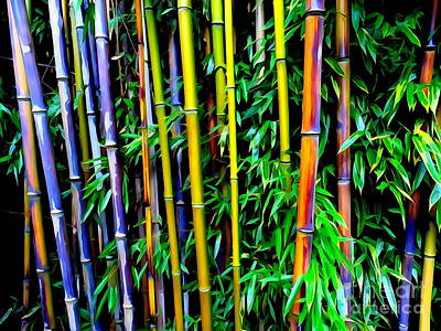 Digital Art - Bamboo Beauty #1 by Ed Weidman