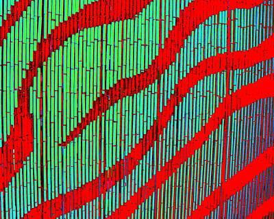 Digital Art - Bamboo Blight by Larry Beat