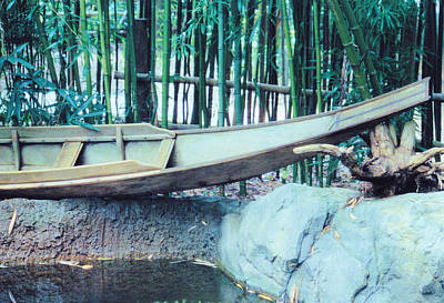 Photograph - Bamboo Boat by Jan Amiss Photography