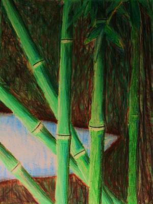 Bamboo Forest Print by Bruce Byrnes
