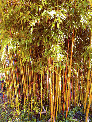 Digital Art - Bamboo Grove by Ann Johndro-Collins