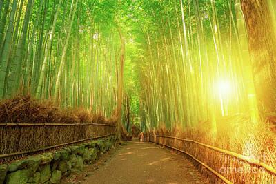 Photograph - Bamboo Grove Arashiyama Kyoto by Benny Marty