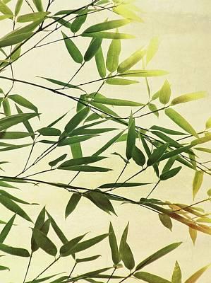 Susann Serfezi Photograph - Bamboo Lightning by AugenWerk Susann Serfezi