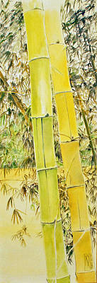 Bamboo Art Print by Rainer Jacob