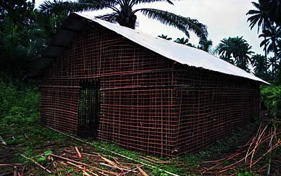 Photograph - Bamboo Structured House by Muyiwa OSIFUYE