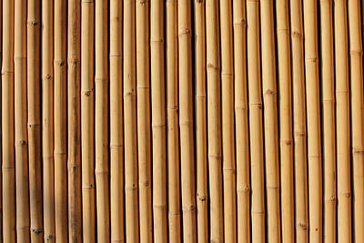 Photograph - Bamboo Wall by Jingjits Photography