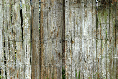 Bamboo Wood Fence Art Print