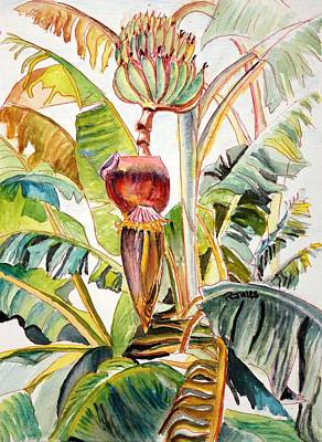 Painting - Banana Bloom by Richard Jules