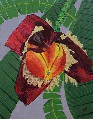 Painting - Banana Blossom by Hilda and Jose Garrancho