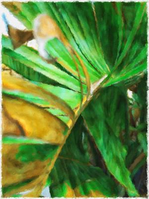 Photograph - Banana Leaf Abstract by Jonathan Nguyen