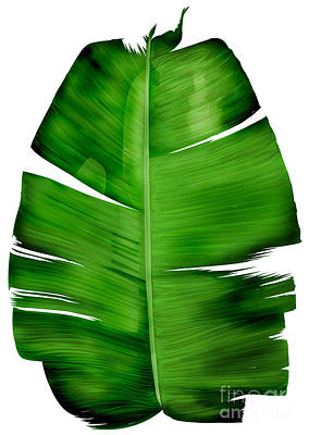 Painting - Banana Leaf Painting by Three second