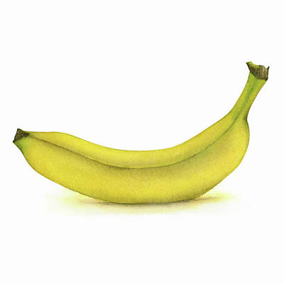 Food And Beverage Royalty-Free and Rights-Managed Images - Banana Watercolor by Zapista Zapista