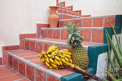 Photograph - Bananas And Pineapple On Terracotta Steps by Catherine Sherman
