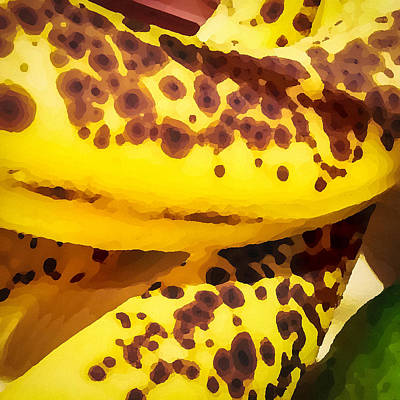 Photograph - Bananas by Ronda Broatch
