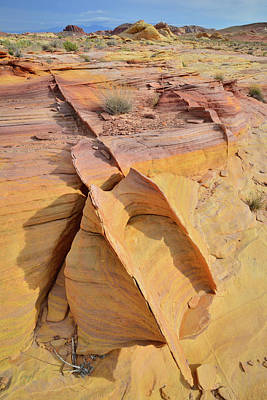 Photograph - Band Of Gold In Valley Of Fire by Ray Mathis