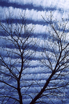 Photograph - Banded Clouds by Garry Ladd