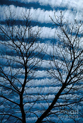 Photograph - Banded Clouds by Gary Ladd