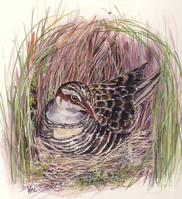 Banded Rail Art Print by Val Stokes