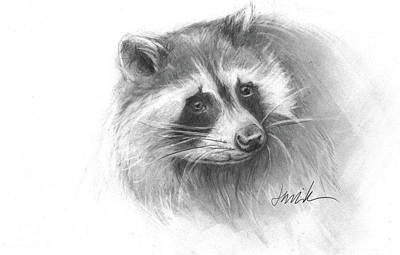 Drawing -  Bandit The Raccoon by Jacki Kellum