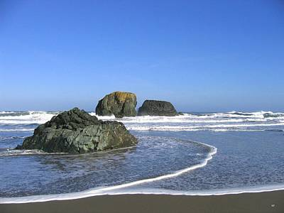Photograph - Bandon 5 by Will Borden