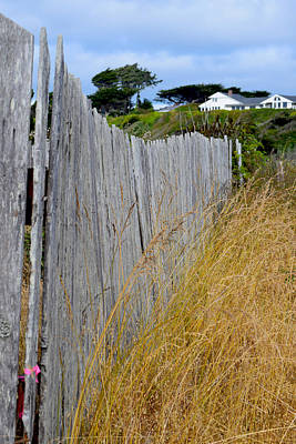 Photograph - Bandon Beach Fence by Michele Avanti