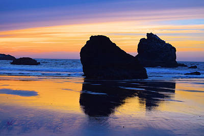 Photograph - Bandon Beach Kittens Sunset by Michele Avanti