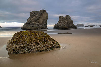 Photograph - Bandon Beach Morning by Tim Bryan