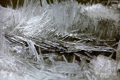 Photograph - Banff Bow Lake Ice Crystals by Adam Jewell