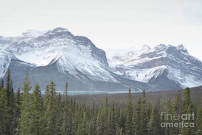 Photograph - Banff Canada Snow Capped Mountain Woodland by Andrea Hazel Ihlefeld