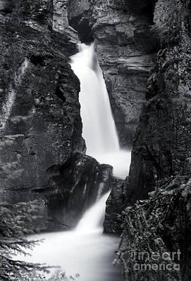 Photograph - Banff - Johnston Canyon Monochrome 3 by Terry Elniski
