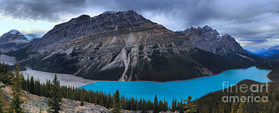 Photograph - Banff Peyto Lake by Adam Jewell