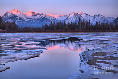 Photograph - Banff Pink Snow Capped Peak Reflections by Adam Jewell