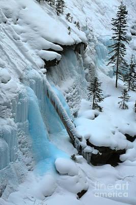 Photograph - Banff Winter Splendor by Adam Jewell