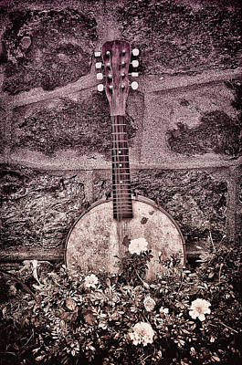 Banjo Mandolin On Garden Wall Art Print by Bill Cannon