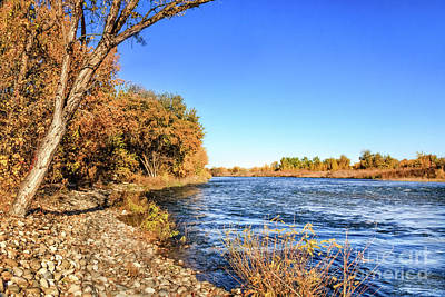 Photograph - Bank View Of Fall Colors by Robert Bales