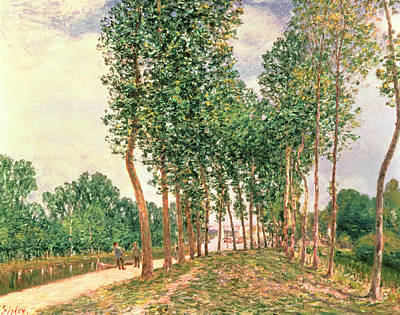 Perspective Painting - Banks Of The Loing, Near Moret  by Alfred Sisley