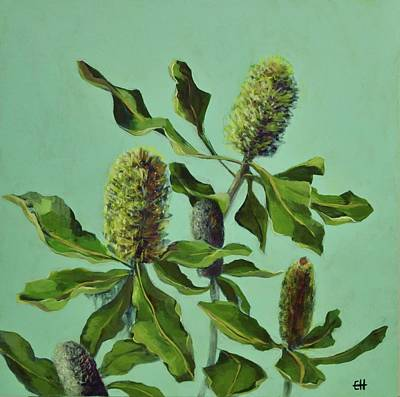 Painting - Banksias Australian Flora Painting by Chris Hobel