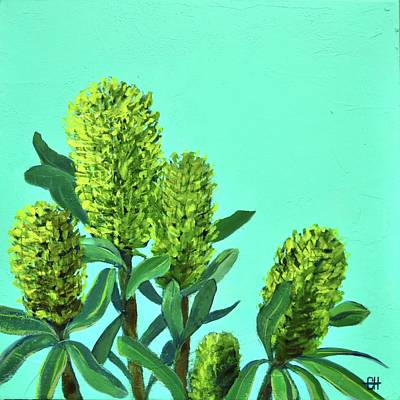 Painting - Banksias On Aqua Painting by Chris Hobel