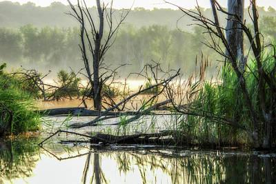 Photograph - Banner Marsh Mist by Kimberleigh Ladd