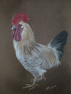 Pastel - Bantam Rooster by Joan Mansson