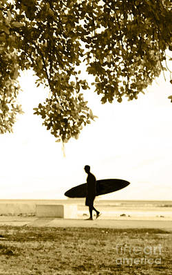 Surf Lifestyle Photograph - Banyan Surfer - Triptych  Part 3 Of 3 by Sean Davey