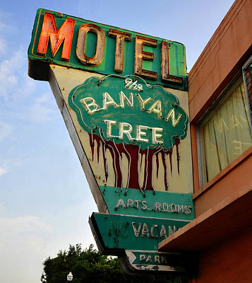 Photograph - Banyan Tree Motel Sign 1950s by David Lee Thompson