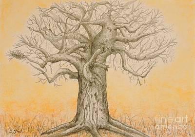 Baobab Painting - Baobab In Graphite by Caroline Street