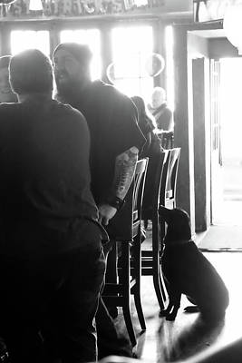 Photograph - Bar Dog by John McArthur
